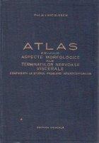 Atlas privind aspecte morfologice ale terminatiilor nervoase viscerale. Contributii la studiul problemei interoceptorilor