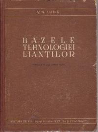 Bazele tehnologiei liantilor