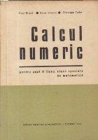 Calcul numeric - pentru anul II de liceu, clase speciale de matematica