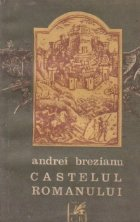 Castelul romanului
