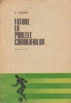 Fotbal la poalele Cordilierilor
