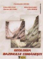 Geologia bazinului Comanesti