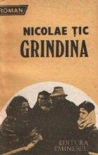 Grindina - Roman