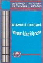 Informatica economica. Indrumar de lucrari practice