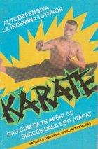 Karate sau cum aperi succes
