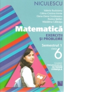 Matematica. Exercitii si probleme pentru clasa a VI-a, semestrul I