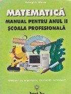 Matematica. Manual pentru anul II, scoala profesionala