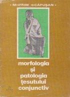 Morfologia si patologia tesutului conjunctiv