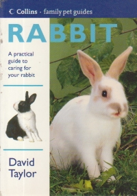Rabbit - A practical guide to caring for your rabbit