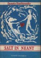Salt neant
