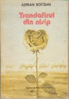 Trandafirul din nisip